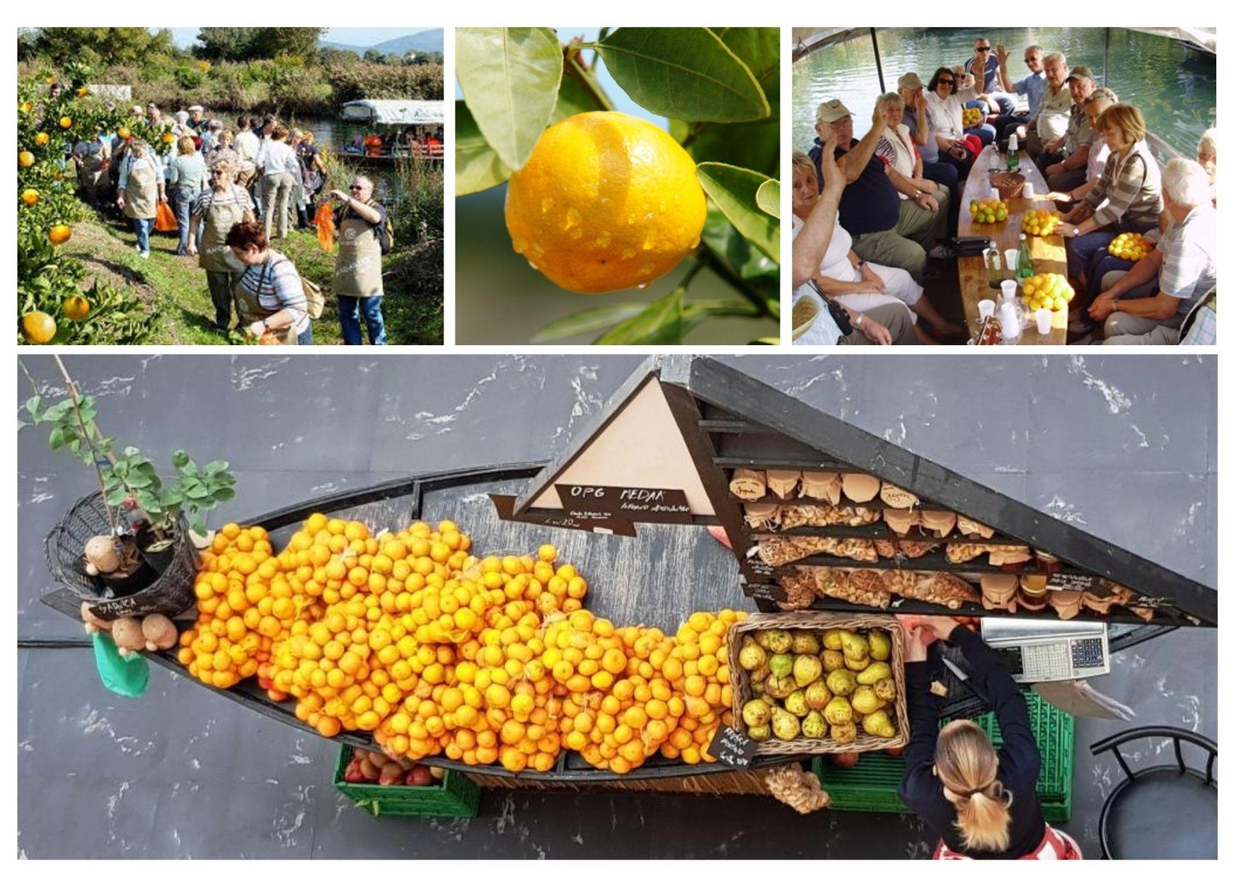 mandarine i turizam